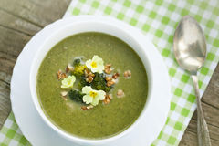 Broccoli  soup with roasted walnuts Royalty Free Stock Images