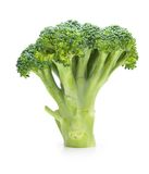 Broccoli standing, isolated on white Royalty Free Stock Images