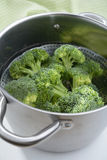 Broccoli in a steamer Stock Image