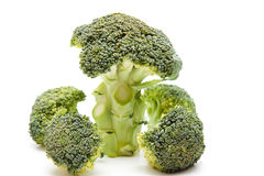 Broccoli with stem Stock Images