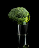 Broccoli on a tin can Stock Photos