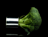 Broccoli on a tin can. Fresh vivid green broccoli on a tin can over black background Royalty Free Stock Image