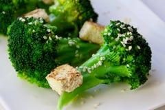 Broccoli and tofu Stock Photography