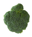 Broccoli Top royalty free stock photo