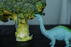 Broccoli and toy dinosaur on black board Stock Photo