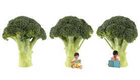 Broccoli tree. Two children studying in the broccoli tree Stock Image