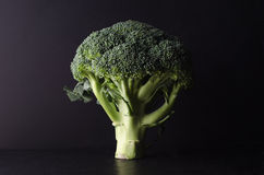 Broccoli Tree Shape on Black Stock Photos