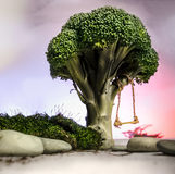 Broccoli Tree Swing. If only I could shrink myself to swing from this edible tree Stock Photos