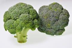 Broccoli. Under the white background Stock Image