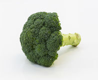 Broccoli vegetable in detail isolated Royalty Free Stock Images