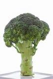 Broccoli vegetable. Isolated broccoli vegetable on plate Stock Photo