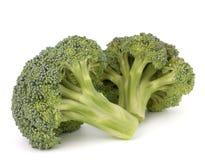 Broccoli vegetable Stock Photography