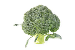 Broccoli vegetable isolated Royalty Free Stock Photography