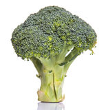 Broccoli Vegetable VII Stock Photo