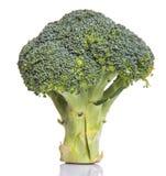 Broccoli Vegetable VII Stock Photo