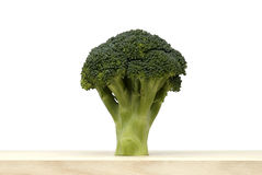 Broccoli vegetable on white background Stock Image