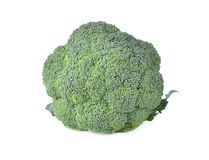 Broccoli vegetable on white background. Broccoli vegetable isolated on white background Royalty Free Stock Photography