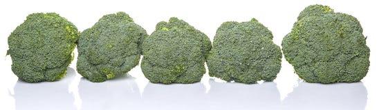 Broccoli Vegetable XI Stock Photo