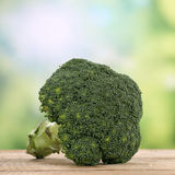 Broccoli vegetables in summer Royalty Free Stock Photography
