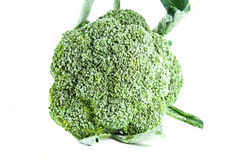 Broccoli. Vegetation broccoli on white background Royalty Free Stock Photo