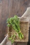 Broccoli verdi freschi su un panno ruvido Fondo scuro Spazio FO Fotografia Stock