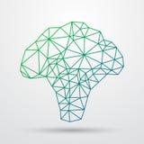 Broccoli verdi poligonali astratti Progettazione geometrica del triangolo Linea illustrazione di Colorfuul di vettore Fotografia Stock Libera da Diritti
