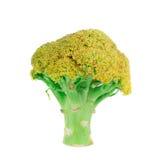 Broccoli vert frais Photos libres de droits