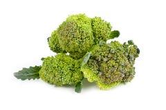 broccoli vita isolerade stems Royaltyfri Foto