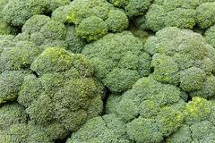 Broccoli wall Stock Image