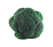 Broccoli on white. Fresh broccoli isolated on white background top view Stock Photo