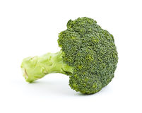 Broccoli  on white Stock Image