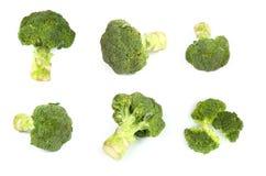 Broccoli on white Stock Photography