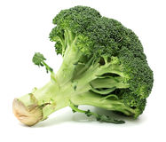 Broccoli on White Background Royalty Free Stock Photography