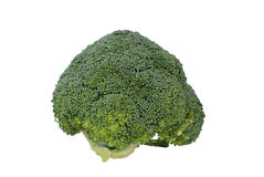 Broccoli. On a white background Royalty Free Stock Photography