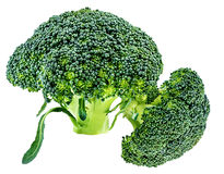 Broccoli on a white Royalty Free Stock Images