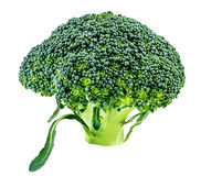Broccoli on a white Royalty Free Stock Image