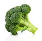 Broccoli on white background stock photography