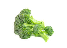 Broccoli on a white background Royalty Free Stock Images