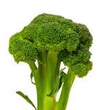 Broccoli on white background. Stock Image