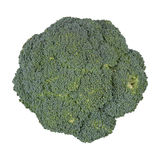 Broccoli on a white background Stock Photos