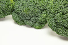 Broccoli in a white background. Pictured broccoli in a white background Royalty Free Stock Photography