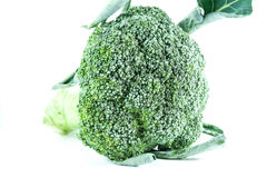Broccoli. On white background for raw cooking and eat Royalty Free Stock Photo