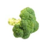 Broccoli on white background Royalty Free Stock Photos