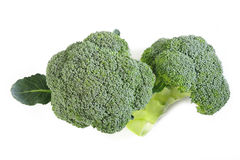 Broccoli on white background Royalty Free Stock Image