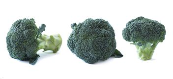Broccoli on white background. Vegetables with copy space for text. Broccoli isolated on a white background. Set of broccoli. Cabbage isolation on white royalty free stock image