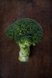 Broccoli on wood. A broccoli on a wood background Stock Photos