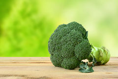 Broccoli on wooden table and green background. Fresh broccoli on wooden table and green background Stock Images