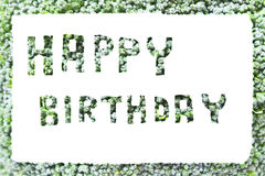 Broccoli, write happy birthday Stock Image