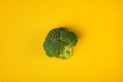 Broccoli on yellow background stock photography