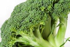 broccoliblockskiva Fotografering för Bildbyråer